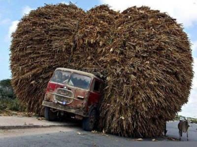 Saraswathi58__lorry1-400x300