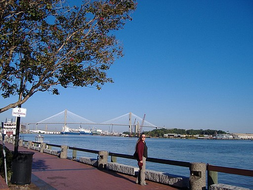 Savannah view